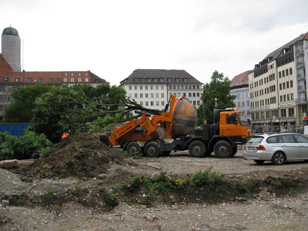 Tree Relocation Company