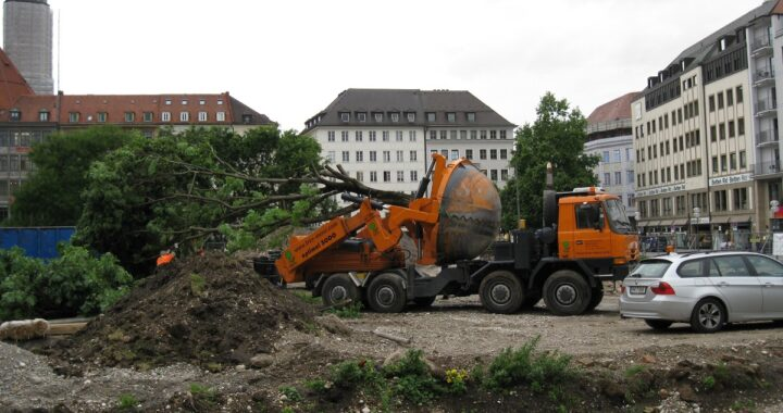 Tree Relocation Company